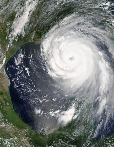 Hurricane Relief Efforts