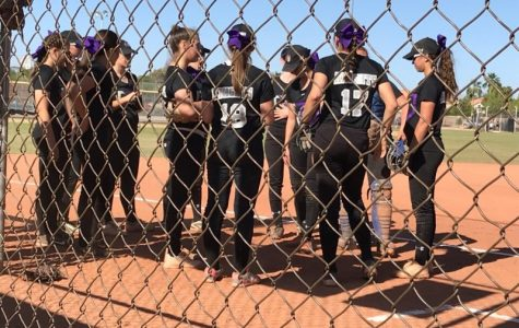 ACP Softball Reaches New Heights, Falls Short at State Tournament