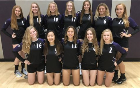 Volleyball Serves Up a Storm at State