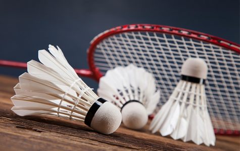 Badminton Dishes out Aces at State