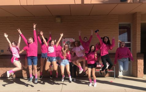 ACP Volleyball's Dig Pink Fundraiser
