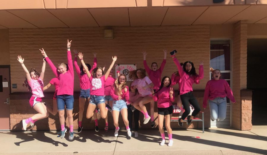 ACP+Volleyballs+Dig+Pink+Fundraiser