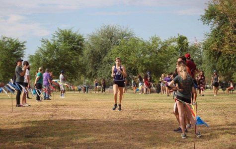 Cross Country's State Adventure