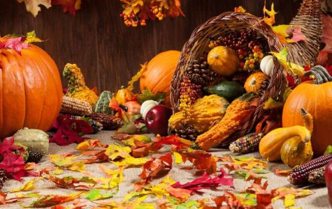 ACP's Thanksgiving Food Drive: Providing Food for Families in Need