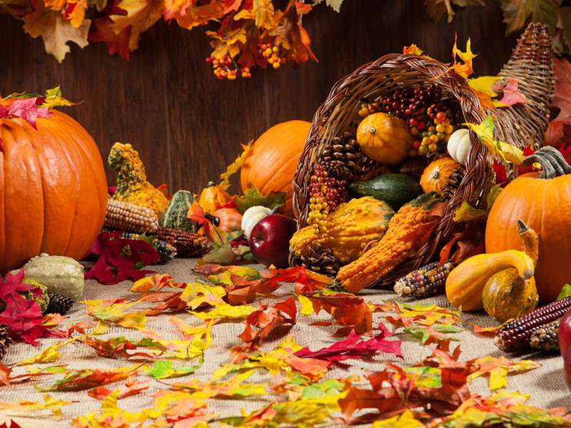 ACP%27s+Thanksgiving+Food+Drive%3A+Providing+Food+for+Families+in+Need