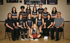 2019-2020 ACP Girls Basketball Team's Exciting Season