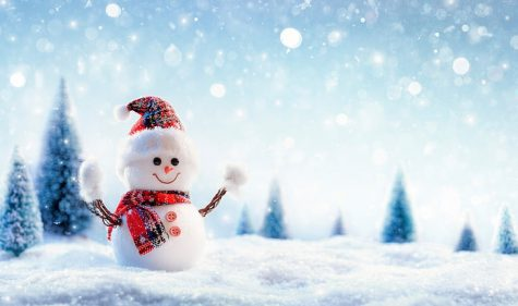 Photo from: https://www.wallpaperflare.com/8k-snowman-winter-new-year-christmas-wallpaper-qluwn