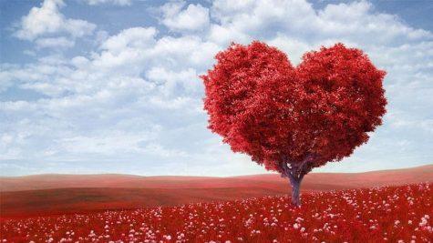 Photo from https://www.awarenessdays.com/awareness-days-calendar/valentines-day-2021/