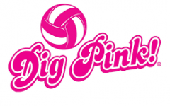 The Dig Pink Volleyball Game